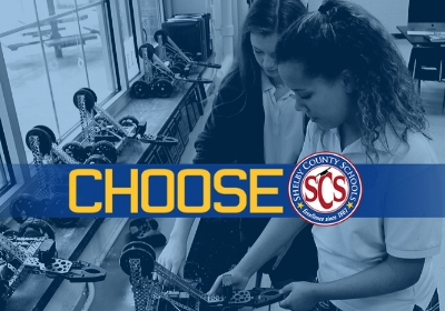 School Choice Options